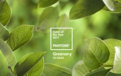 pantone color of the year 2017 Pantone Color of the Year 2017: Greenery Pantone Color of the Year 2017 Greenery10 240x150