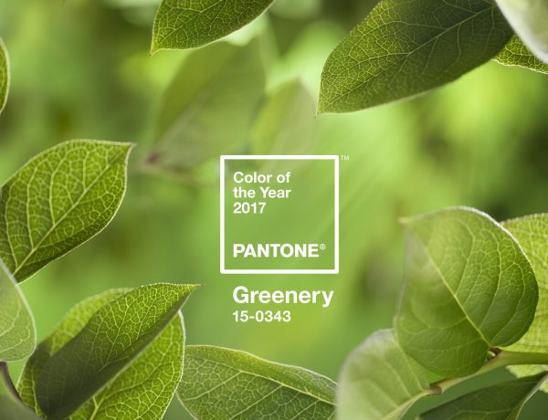 pantone color of the year 2017 Pantone Color of the Year 2017: Greenery Pantone Color of the Year 2017 Greenery10 600x460